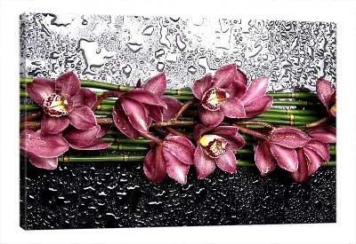5D картина  «Орхидеи с каплями»