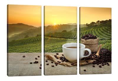 5D картина  «Кофейные плантации»