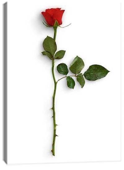 5D картина «Красные розы. Арт 1»