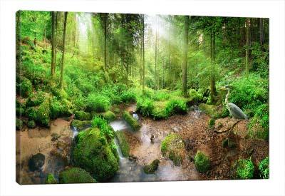 5D картина «Солнечный лес»