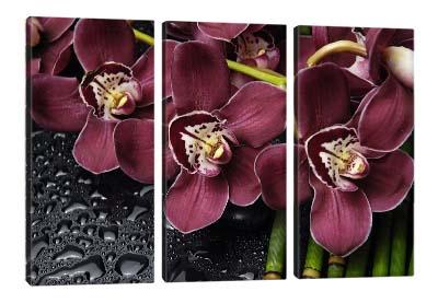 5D картина «Орхидеи»