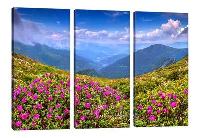 5D картина «Горные цветы»