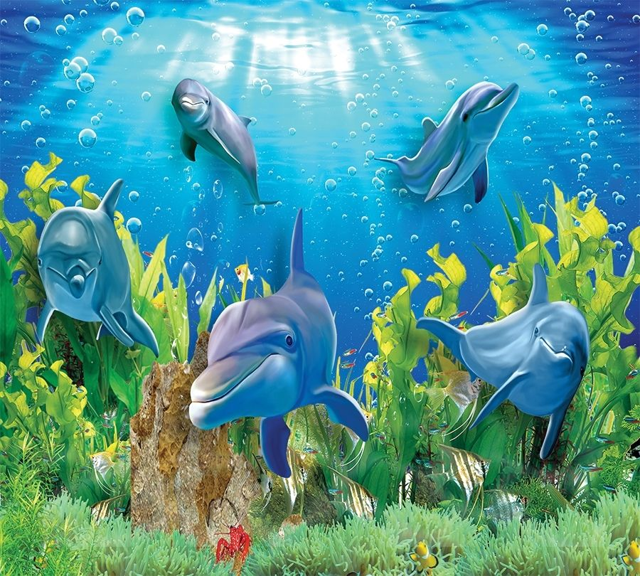 3D Фотообои Фотошторы «Дельфины»