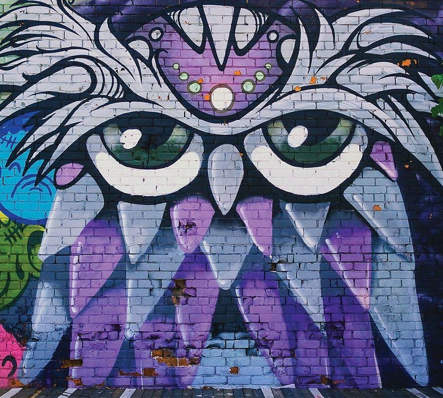 Фотошторы «Граффити сова»