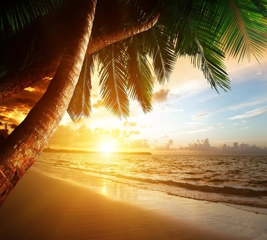 Фотошторы «Закат под пальмами» вид 1