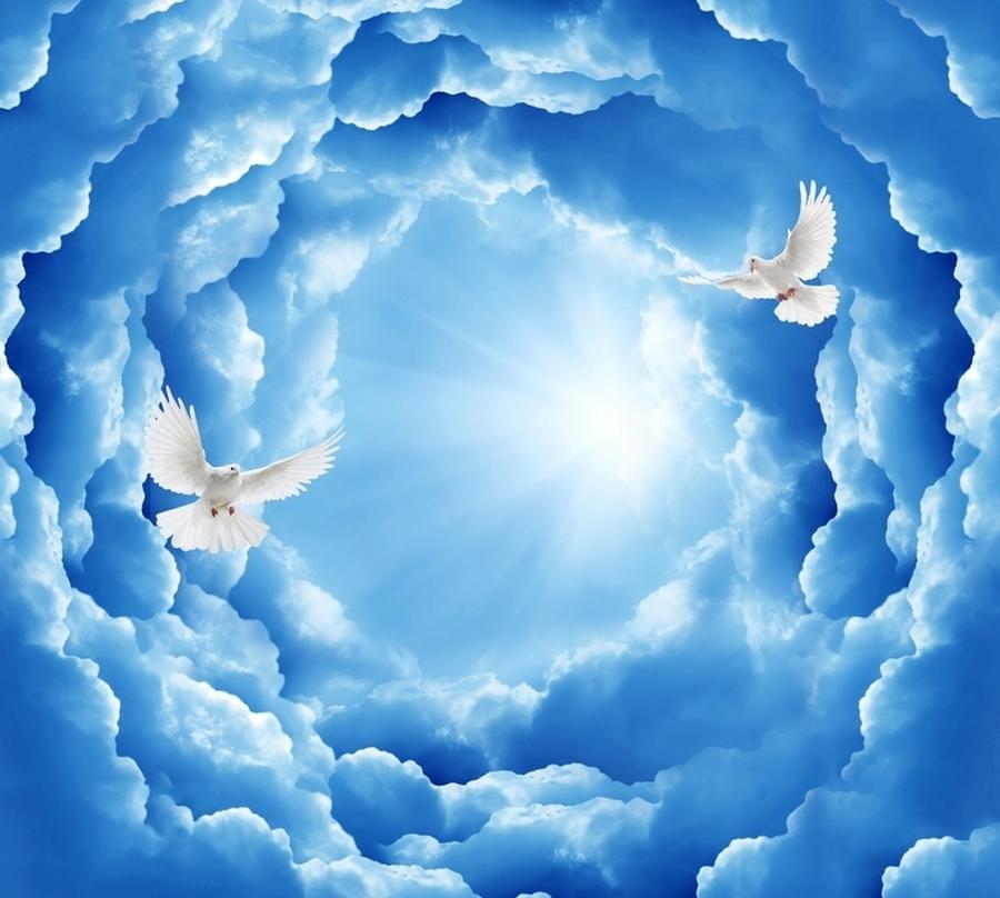 3D Фотообои Фотошторы «Голуби в небе»