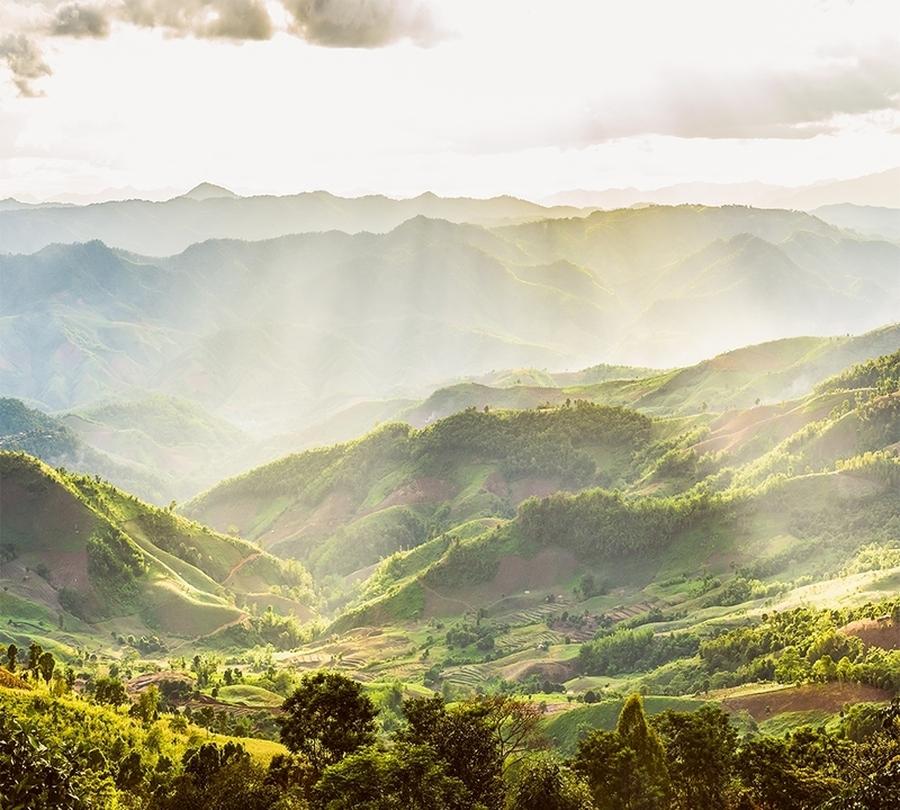 Фотошторы «Зеленая долина» вид 1