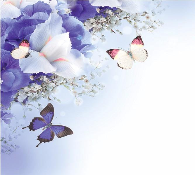 Фотошторы «Бабочки под нежными цветами» вид 1