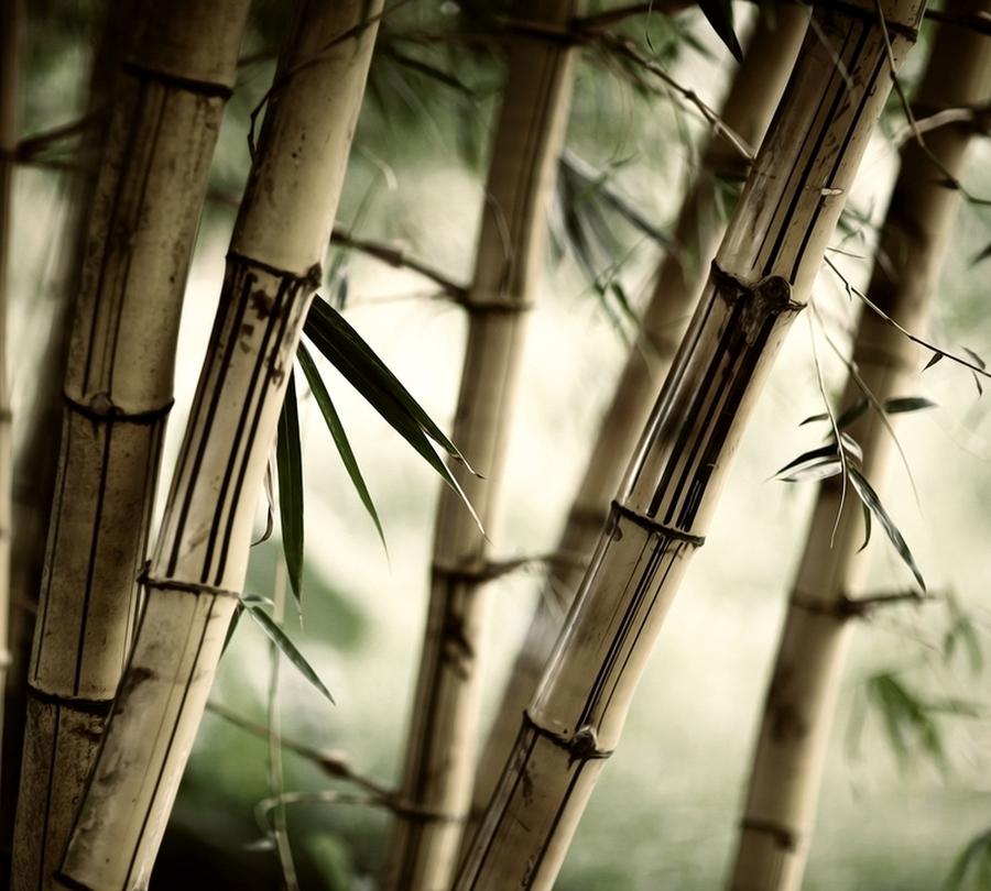 "3D тюль ""Бамбук"" вид 2"