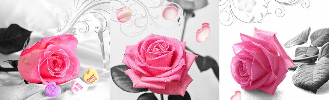 Модульная картина «Розовые розы»