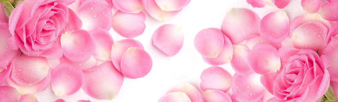 Модульная картина «Розовые розы в лепестках»