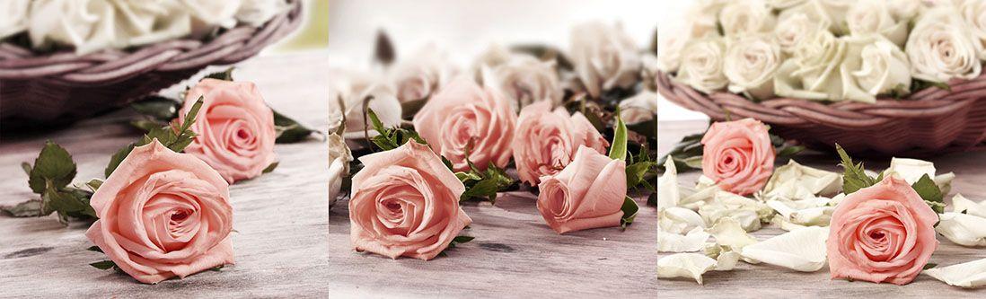Модульная картина «Розы на полу и в корзине»