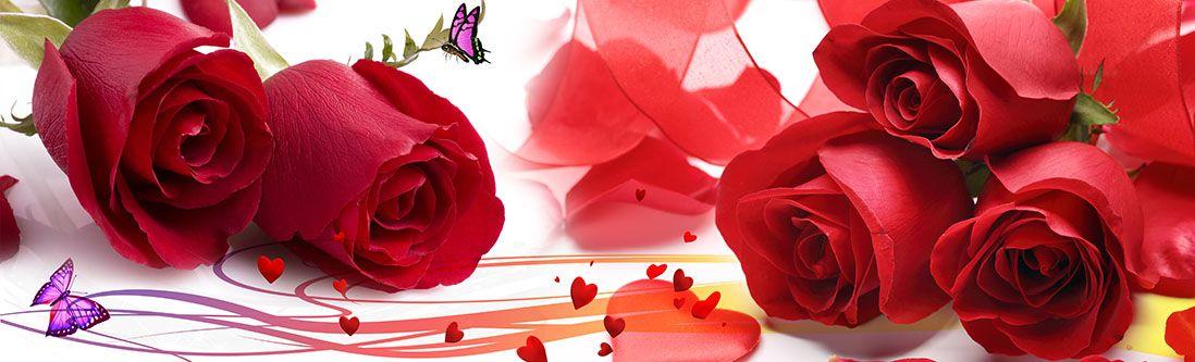 Модульная картина «Розы с двумя бабочками»