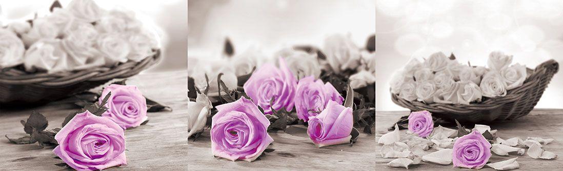 Модульная картина «Нежно-фиолетовые розы с белыми»