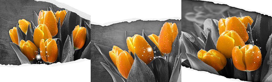 Модульная картина «Желтые тюльпаны с росой»
