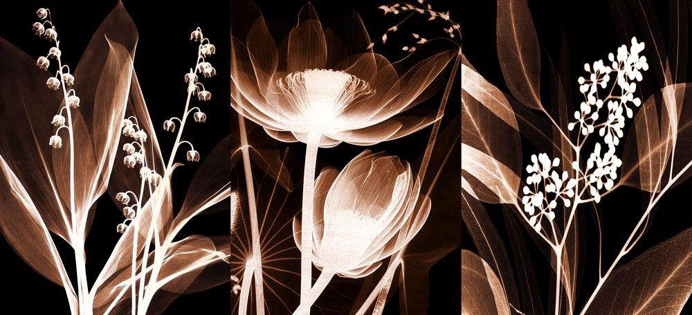 Модульная картина «Светящиеся цветы»