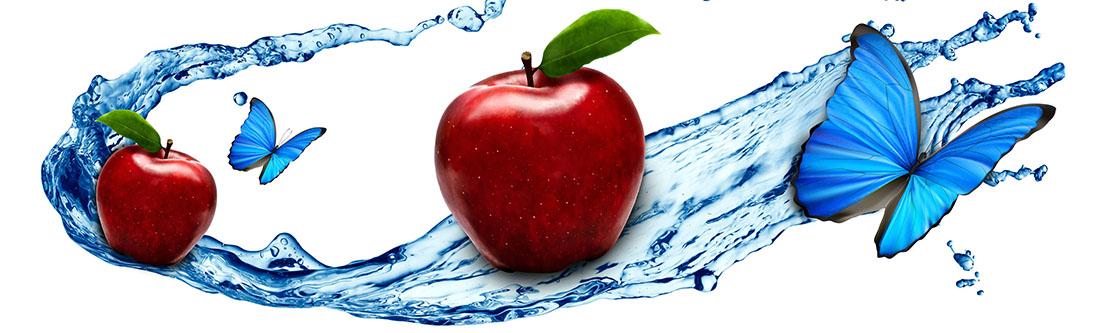 Модульная картина «Красное яблоко и бабочка»