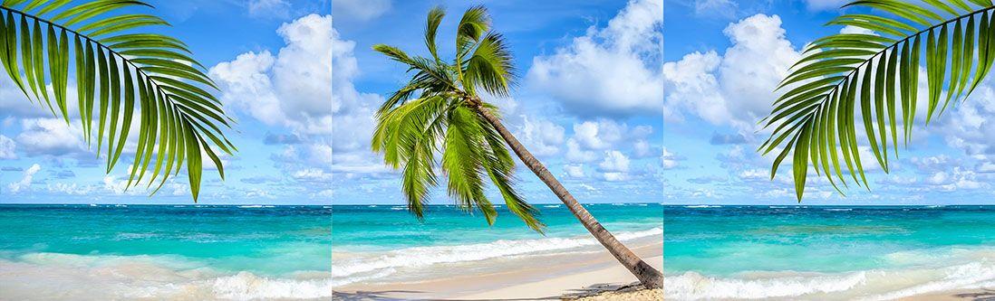 Модульная картина «Пальма на берегу моря»