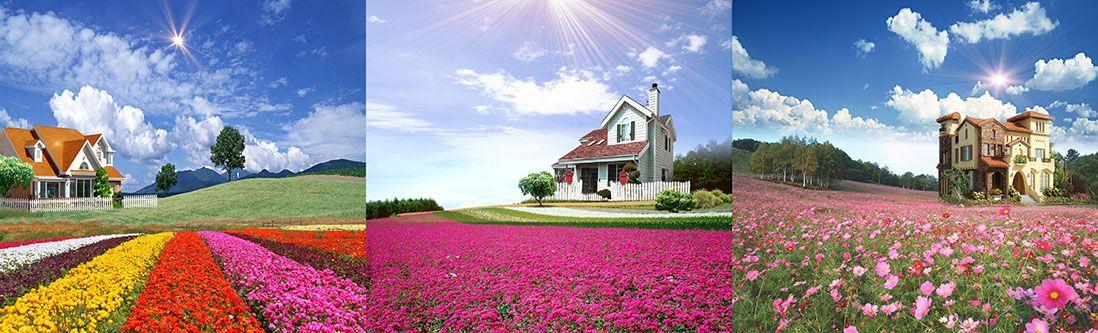 Модульная картина «Коттеджи на полях с цветами»