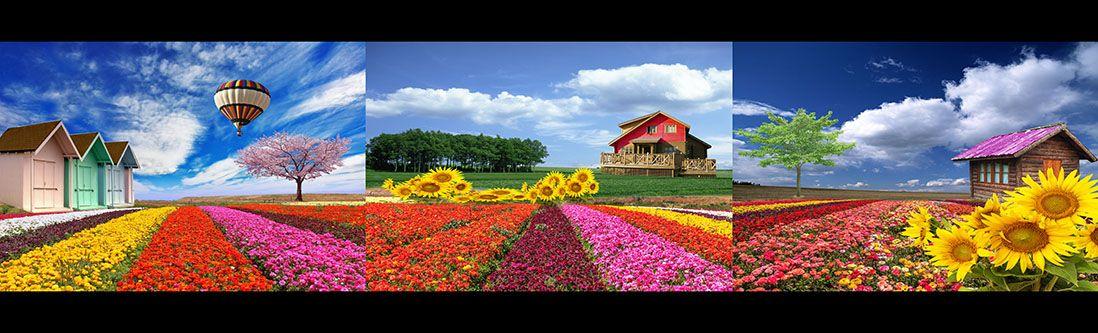 Модульная картина «Домики в цветочных полях»