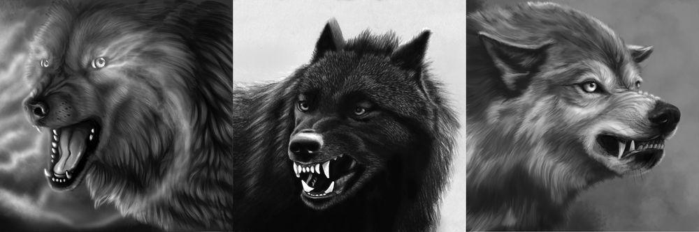 Модульная картина «Злые волки»