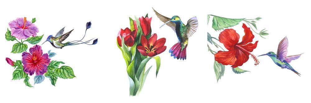 Модульная картина «Колибри на цветах»