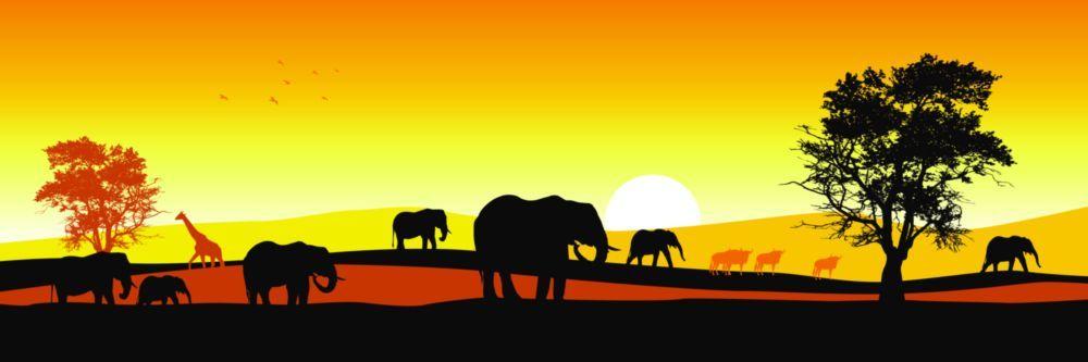 Модульная картина «Семейство слонов»