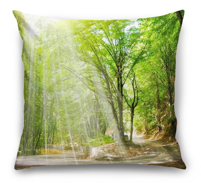 3D Подушка «Дорога в солнечном лесу» вид 1