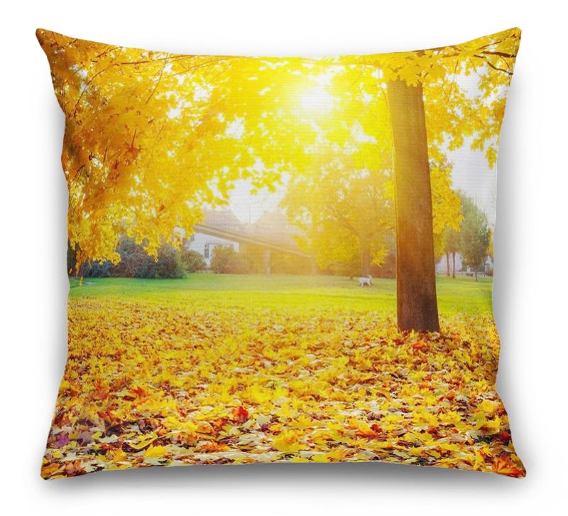 3D Подушка «Осенний парк»  вид 1