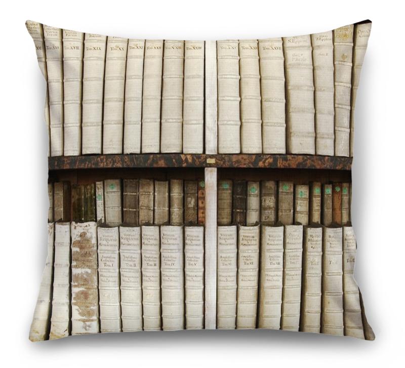 3D Подушка «Библиотека» вид 1