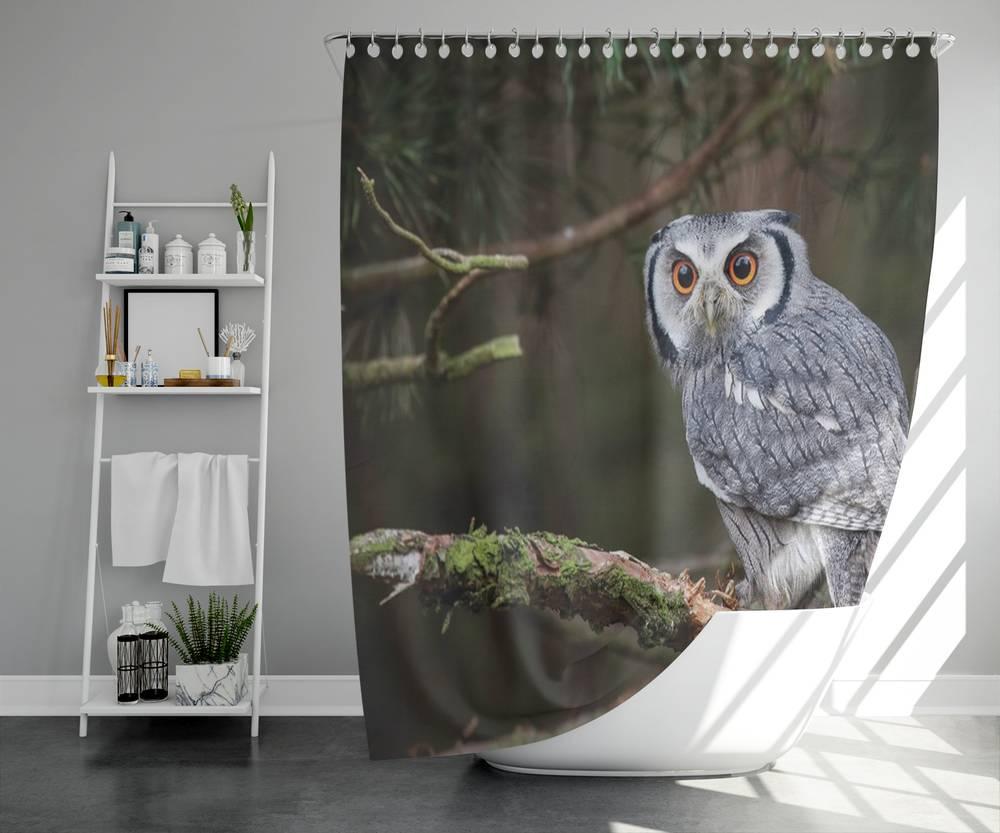 Занавеска для ванной «Симпатичная сова» вид 5