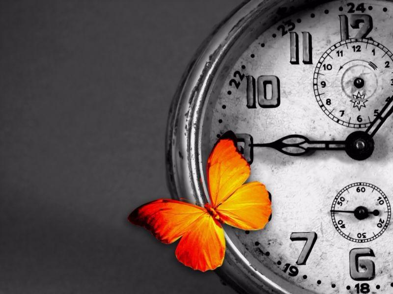 3D Фотообои 3D Фотообои «Бабочка на часах»