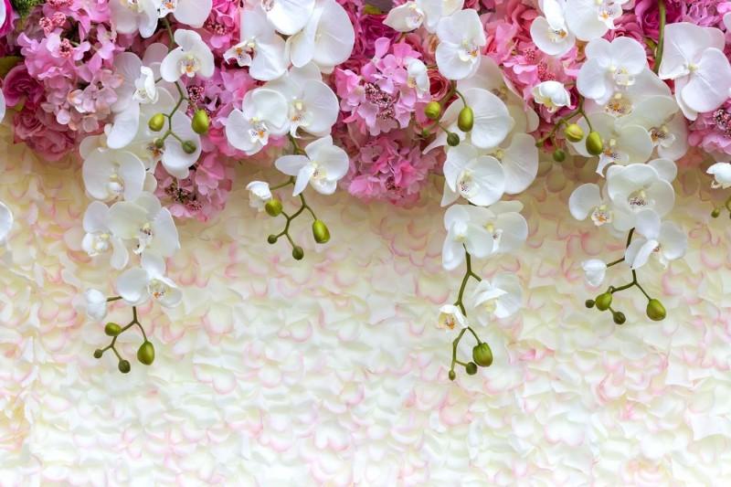 3D Фотообои 3D Фотообои «Ниспадающие орхидеи»
