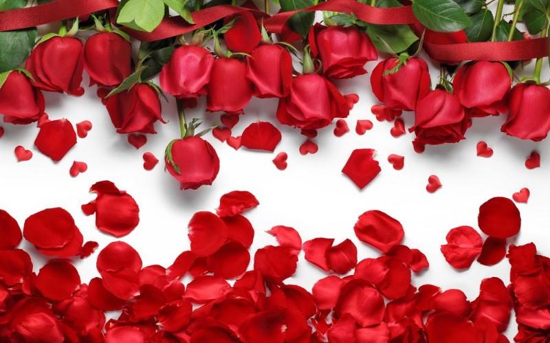 3D Фотообои 3D Фотообои «Алые розы с лепестками»