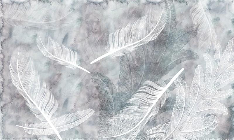 3D Фотообои «Воздушные перья»