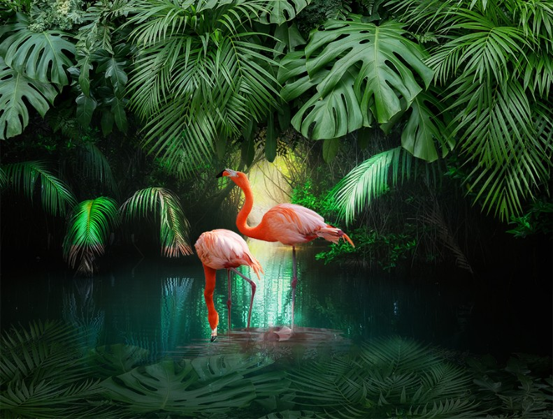3D Фотообои «Романтика в тропиках»