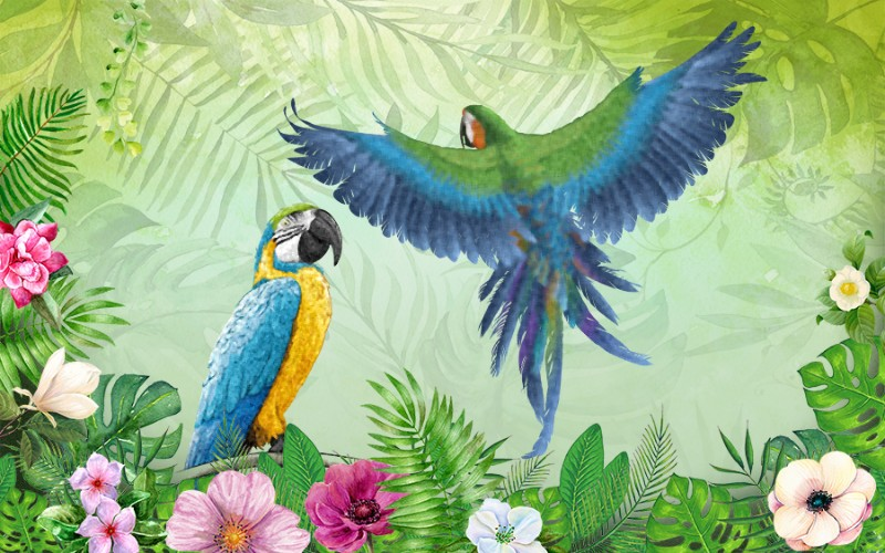 3D Фотообои «Яркие попугаи»