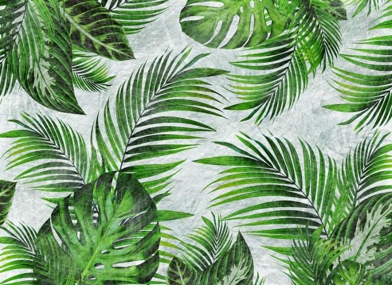 3D Фотообои 3D Фотообои «Стильные тропики»