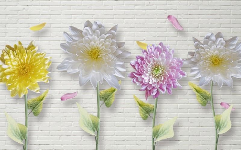 3D Фотообои «Георгины на кирпичной стене»