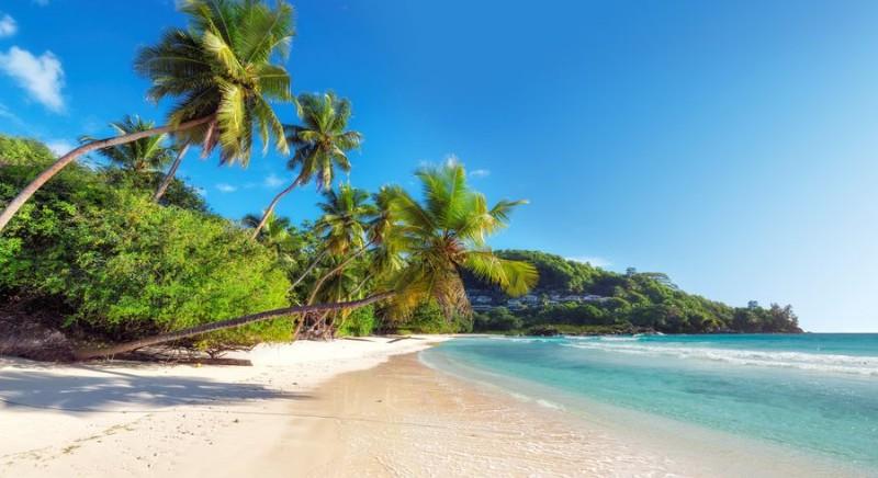 3D Фотообои 3D Фотообои «Тропический берег»