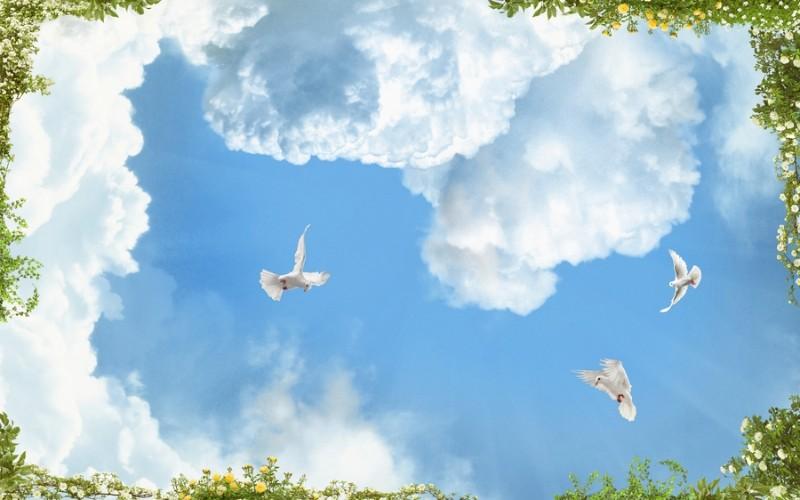 3D Фотообои 3D Фотообои «Голуби в облаках»
