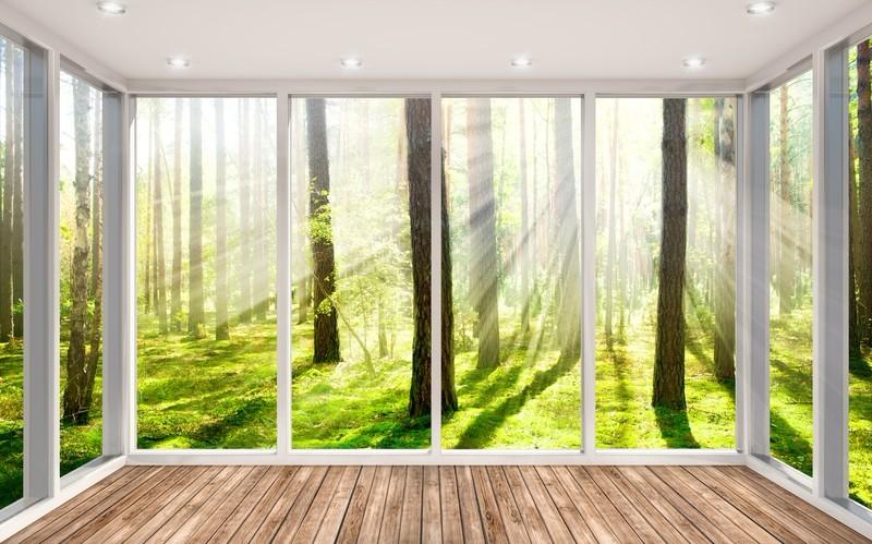 3D Фотообои «Терраса в солнечном лесу»