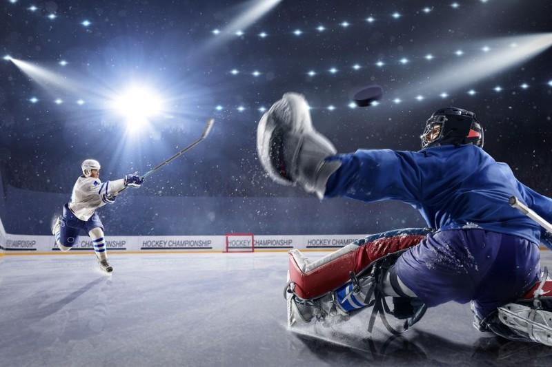 3D Фотообои 3D Фотообои «Хоккейный вратарь»