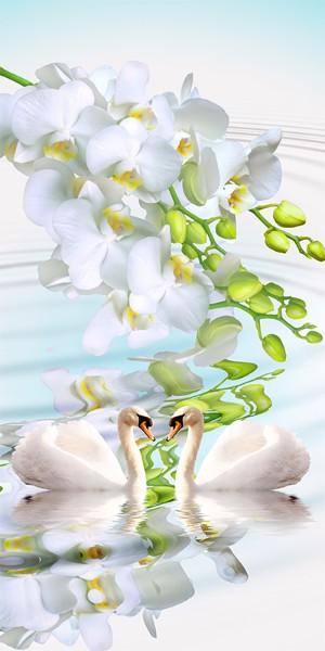 3D Фотообои «Лебеди на фоне белых орхидей»
