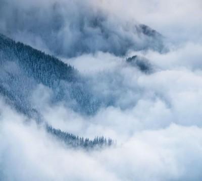 Шторы для ванной «Еловые склоны в голубом тумане»