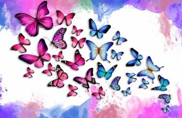 3D Ковер  «Красочные бабочки»