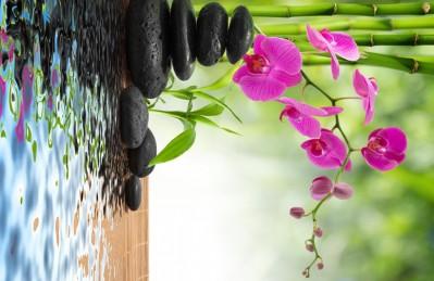 3D Ковер «Цветы орхидеи и черная галька»