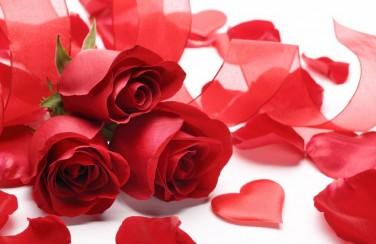 3D Ковер «Композиция с алыми розами»