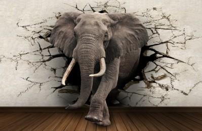 3D Ковер «Слон сквозь стену»