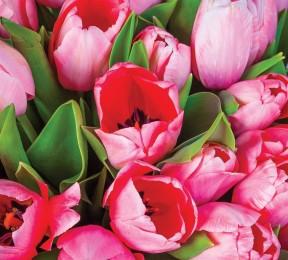 Фотошторы «Букет тюльпанов»